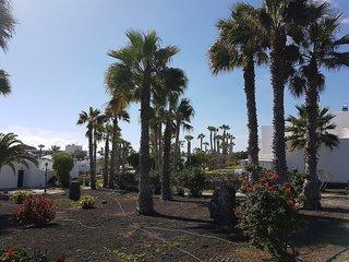 Palmeras Garden
